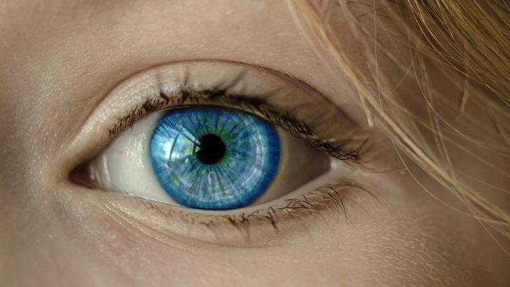 Znaczenie zmysłu wzroku